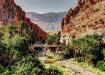 vacanța Algeria